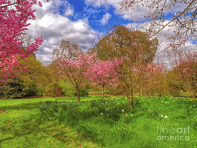 Photograph - The Colours Of Spring by Leigh Kemp