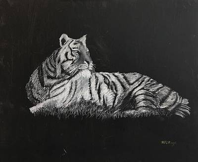 Pastel - Tiger by Richard Le Page