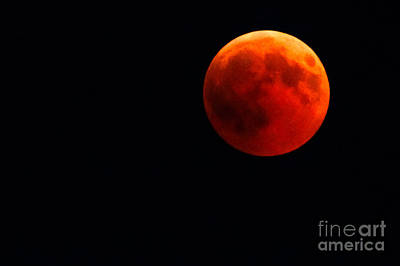 Photograph - Total Red Lunar Eclipse by Benny Marty
