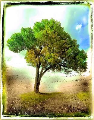 Mixed Media - Trees by Javier Lopez Rotella