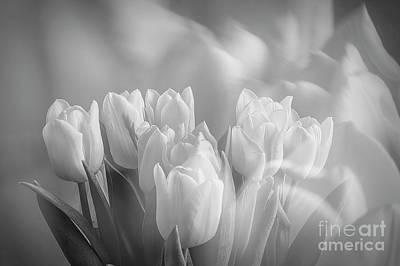 Impressionism Photos - Tulips by Veikko Suikkanen