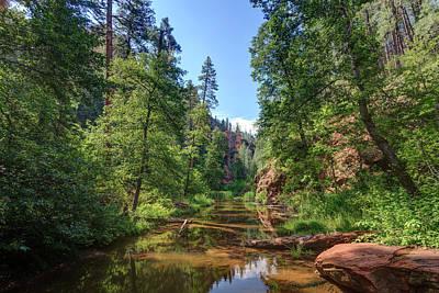 Oak Creek Canyon Wall Art - Photograph - Usa, Arizona, Sedona, Oak Creek Canyon by Michele Falzone