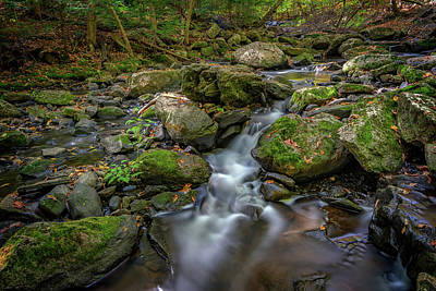 Photograph - Vaughan Brook by Rick Berk
