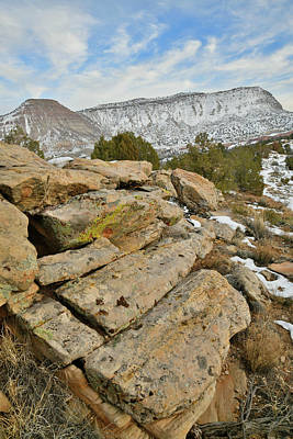 Photograph - View Along Rim Rock Drive In Colorado National Monument by Ray Mathis
