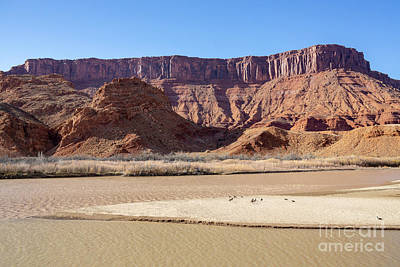 Photograph - View At Sorrel River Ranch On The Colorado River Near Moab, Utah by William Kuta