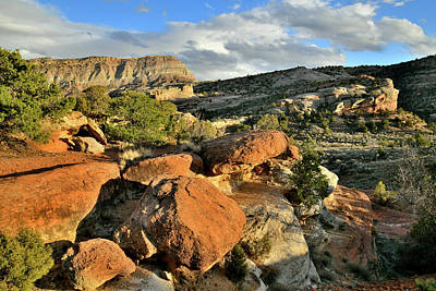 Photograph - View From Rim Rock Drive In Colorado National Monument by Ray Mathis