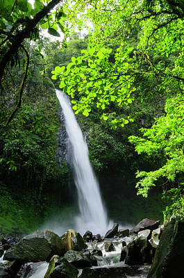 Arenal Photograph - Waterfall In A Tropical Rainforest by Ogphoto