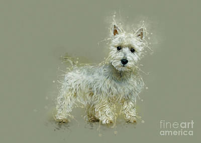 Digital Art - West Highland White Terrier by Ian Mitchell