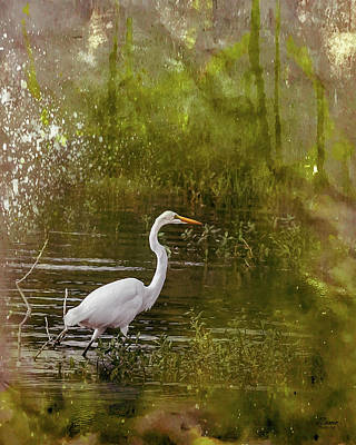Photograph - White Heron by Jim Ziemer