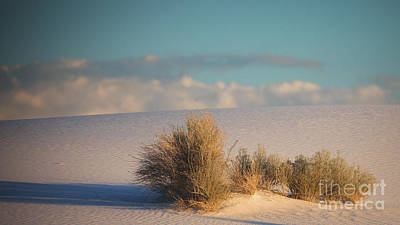 Photograph - White Sands Sunset by Doug Sturgess