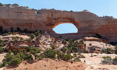 Photograph - Wilson Arch, Along Us Highway 191 South Of Moab, Utah Usa by William Kuta