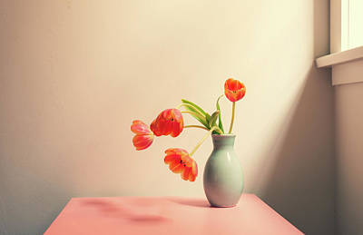 Photograph - Wilting tulips by the window by Natalie Board
