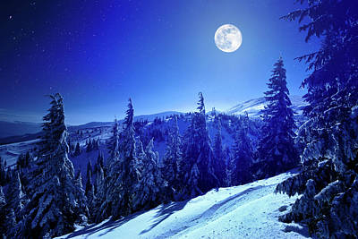 Photograph - Winter Moon by Yourapechkin