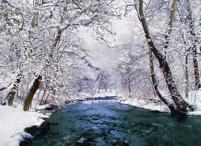 Photograph - Winter White by Jessica Jenney