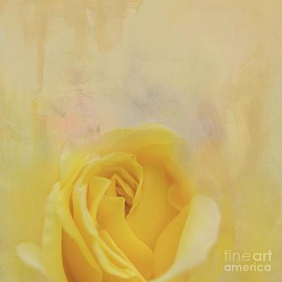 Mixed Media - Yellow Rose by Eva Lechner