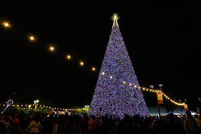 Photograph - 100 Foot Christmas Tree Delray Beach Florida by Lawrence S Richardson Jr
