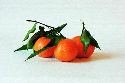 Photograph - 11--01-13 Studio. 3 Clementines by Lachlan Main
