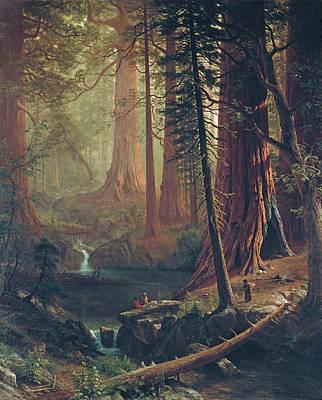 Painting - Giant Redwood Trees Of California by Albert Bierstadt