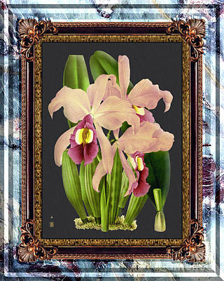 Purely Purple - Vintage Orchid Antique Design Marble Blue-Ice by Baptiste Posters