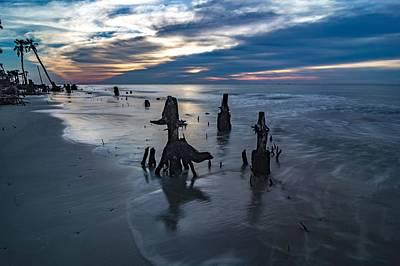 Photograph - Beautiful Nature On Hunting Island South Carolina by Alex Grichenko