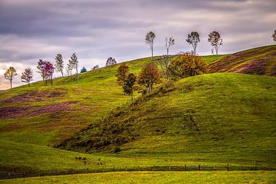 Photograph - Picturesque Autumn Landscape In West Virginia by Alex Grichenko