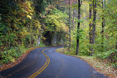 Photograph - 1513 Smoky Mountain National Park by Steve Sturgill
