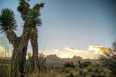 Photograph - Red Rock Canyon Las Vegas Nevada At Sunset by Alex Grichenko