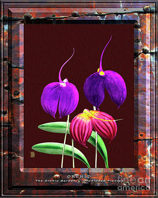 Vermeer Rights Managed Images - Classic Vintage Orchid and Hyper-Realism Painting of Rusted Metal Royalty-Free Image by Baptiste Posters