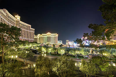 Animal Watercolors Juan Bosco - Nigh Life And City Skyline In Las Vegas Nevada by Alex Grichenko