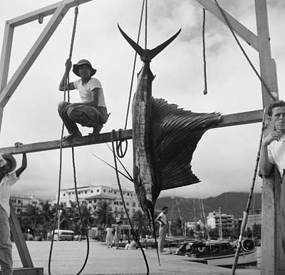 Trapped Photograph - Acapulco, Mexico by Michael Ochs Archives