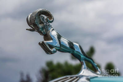 1936 Dodge Hood Ornament Art Print
