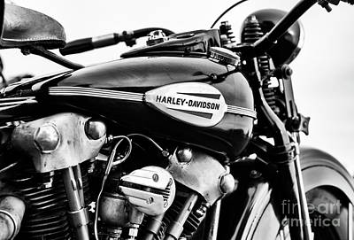 Photograph - 1946 Knucklehead Monochrome by Tim Gainey