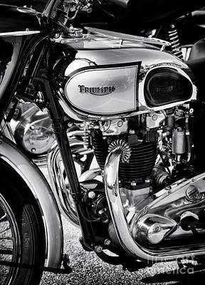 Photograph - 1949 Triumph Tiger Monochrome by Tim Gainey