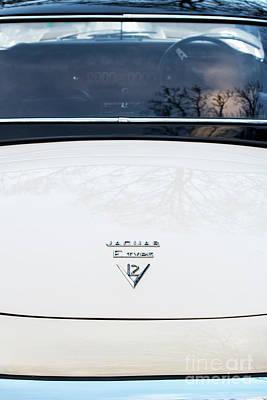 Photograph - 1971 Jaguar E Type V12 by Tim Gainey