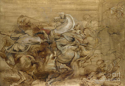 Animals Drawings - A Lion Hunt by Rubens by Peter Paul Rubens