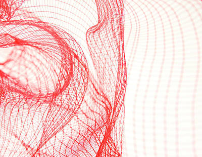 Photograph - Abstraction In Plastic Net by Magaiza