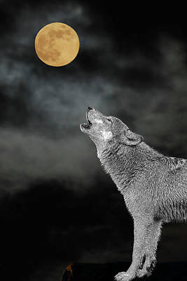 Photograph - Bark At The Moon - Paintography by Dan Friend