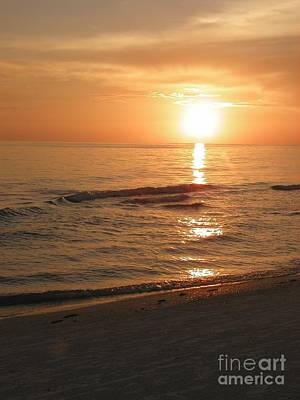 Photograph - Beach Sunset by TJ Fox