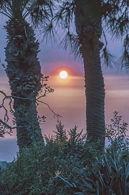 Photograph - Beautiful Sunset In Santa Monica California by Alex Grichenko