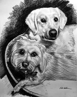 Drawing - 2 Dogs In A Basket by Robert Korhonen