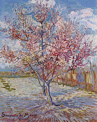 Painting - Flowering Peach Trees by Vincent van Gogh