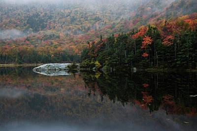 Photograph - Foggy Foliage Morning by Jeff Folger