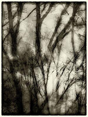 Photograph - Brouillard by Jorg Becker