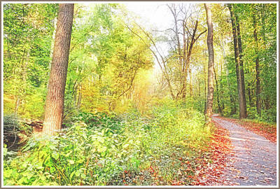 Photograph - Forest Path In Autumn by A Gurmankin