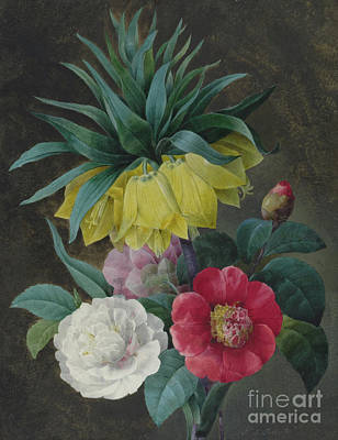 Painting - Four Peonies And A Crown Imperial  by Pierre-Joseph Redoute