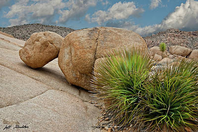 Photograph - Gneiss Rock Formations by Jeff Goulden