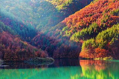 Photograph - Green Lake by Evgeni Dinev
