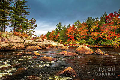 Photograph - Moose River by Roger Monahan