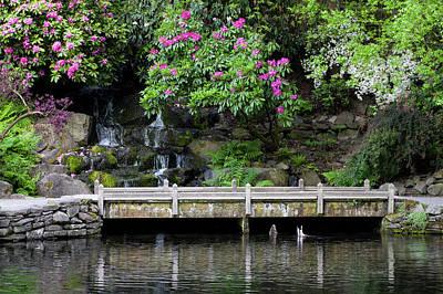 Photograph - Peace In The Garden  by Steven Clark