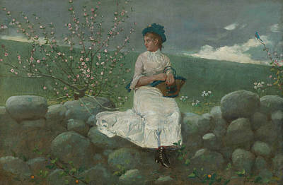 Painting - Peach Blossoms by Winslow Homer